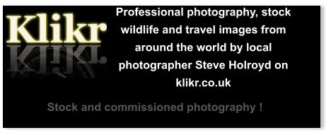 Professional photography, stock wildlife and travel images from around the world by local photographer Steve Holroyd on klikr.co.uk Stock and commissioned photography !