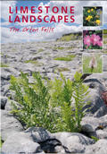 Limestone Landscapes, The Orton Fells brochure cover