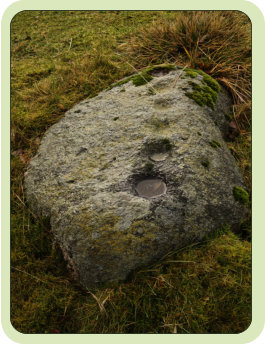 This Shap granite cup stone monument is likely neolithic in date, it bears six cup marks in a curved line.